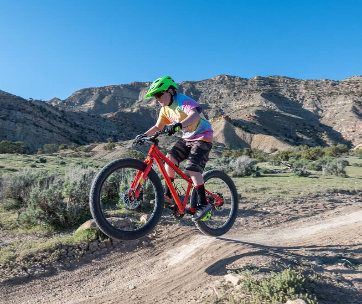 best-kids-mountain-bike-brands-